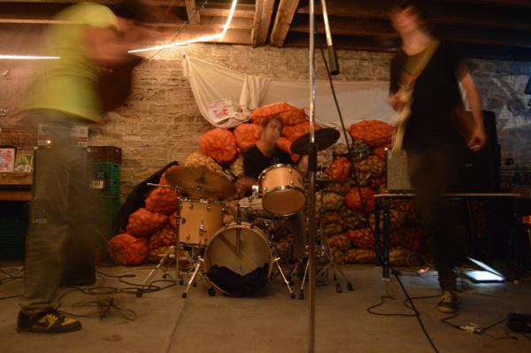 live-patates